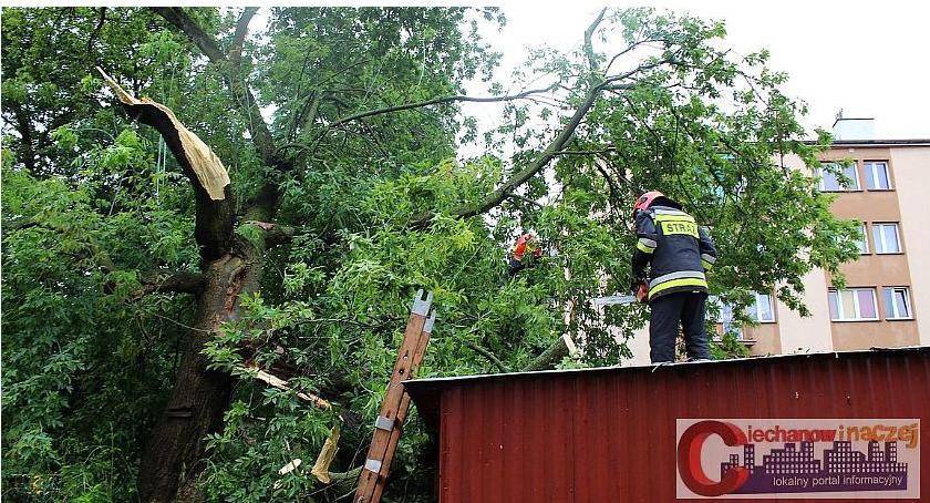 Pozostałe Interwencje, Strażacy usuwają skutki porannych Podjęli kilkadziesiąt interwencji (zdjęcia) - zdjęcie, fotografia