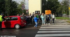 Uczniowie z Ciechanowa apelują do kierowców: Nie polujcie na zebrach!