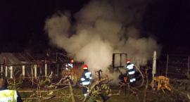 Pożar na terenie ogrodów działkowych w Ciechanowie