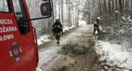 Pracowita noc i poranek strażaków z pow. ciechanowskiego. Podjęli kilkanaście interwencji