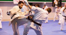 Zgrupowanie Karate Kyokushin w Ciechanowie (zdjęcia)